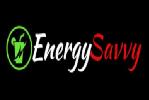 energysavvy (1)